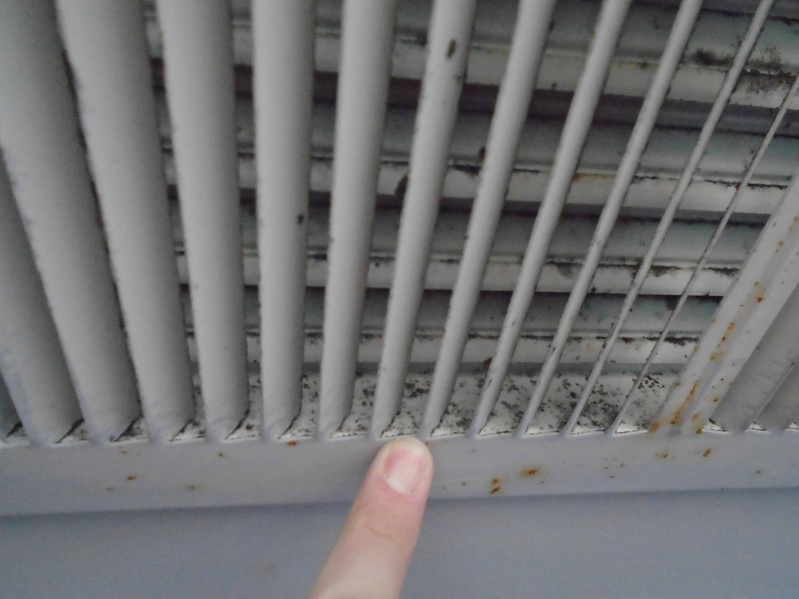 mold on hvac vent