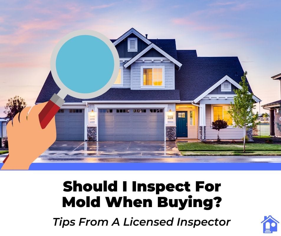 should i get a mold inspection when buying a house