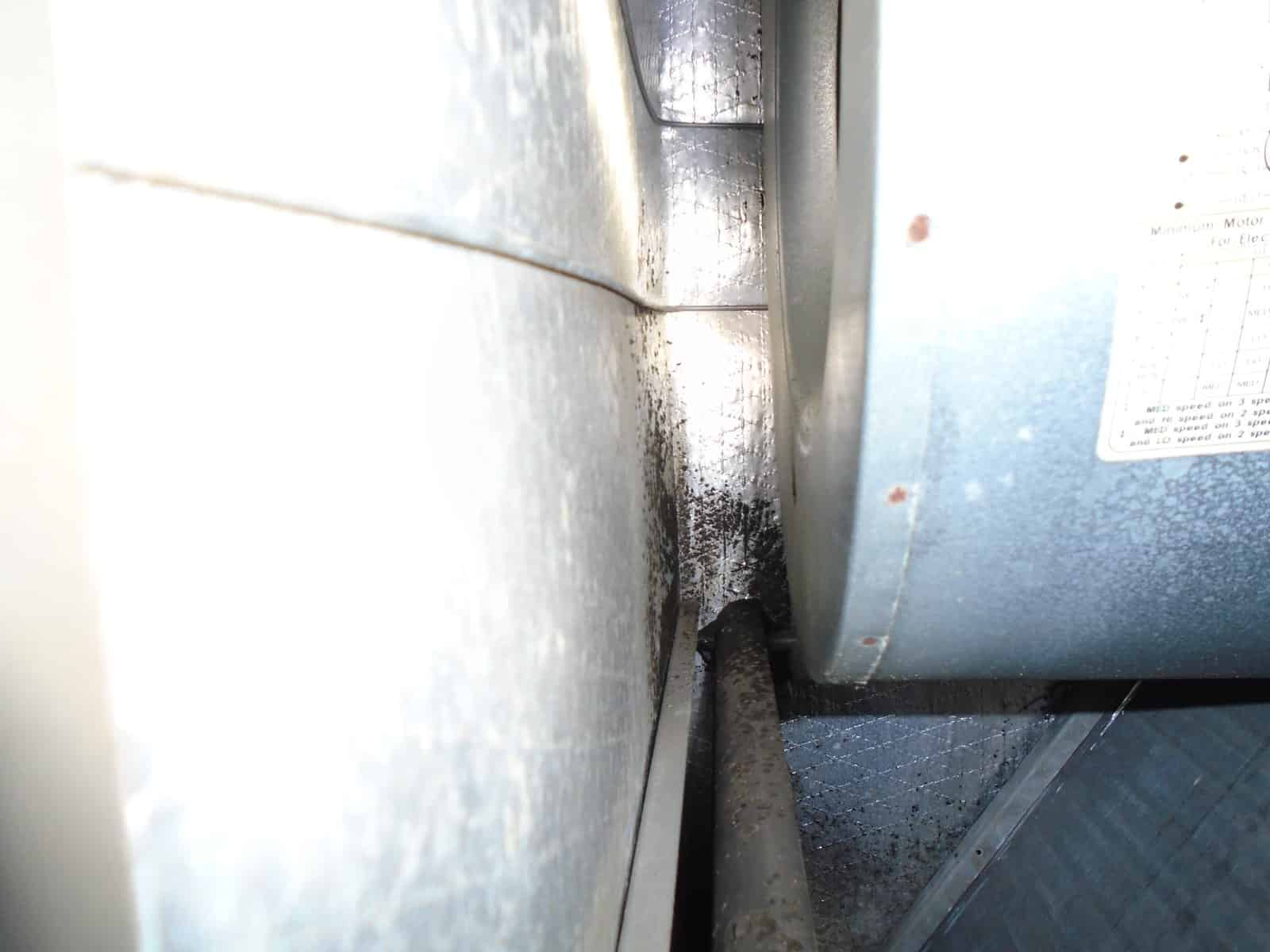 picture of mold in air duct