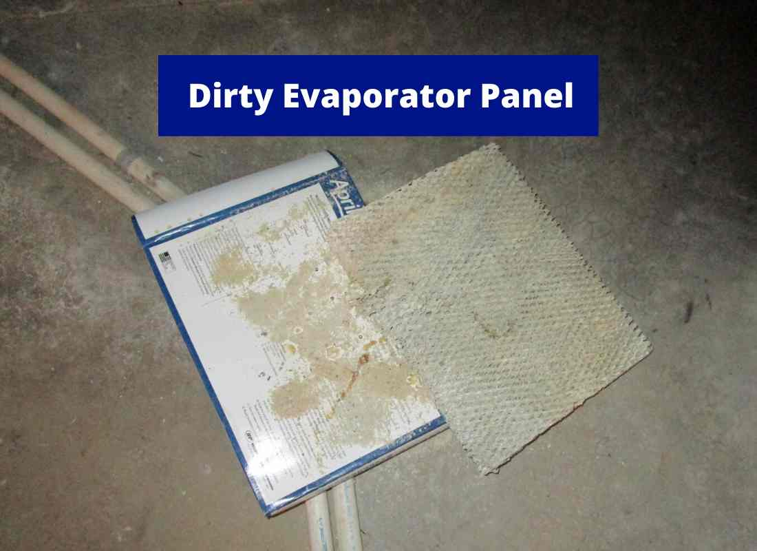 dirty evaporator panel (1)