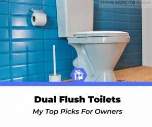 best dual flush toilets (1)