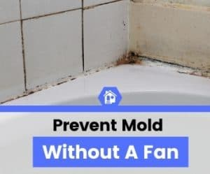 how to prevent mold in bathroom without fan (1)