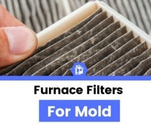 top best rated furnace filter for mold reviews