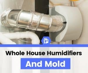whole house humidifier and mold